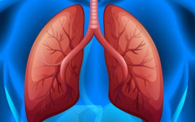 Startup says A.I. helped it find treatment for rare lung disease in record time