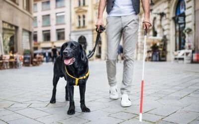 New device could help visually impaired avoid obstacles, research suggests